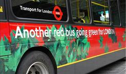 green-bus.jpg