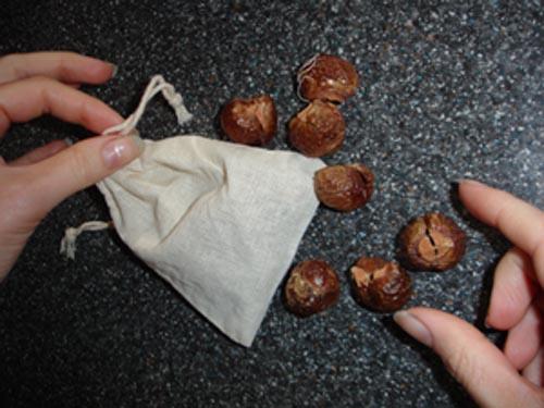 soapnuts1.jpg
