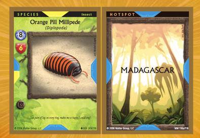 Xeko Cards