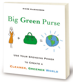 Big Green Purse by Diane MacEachern