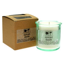 Spiced Apple Jar Candle